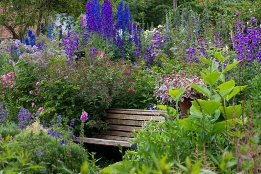 wpid18698-Midsummer-Cottage-Garden-GHGH079-nicola-stocken.jpg
