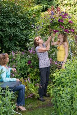 wpid18728-Midsummer-Cottage-Garden-GHGH003-nicola-stocken.jpg
