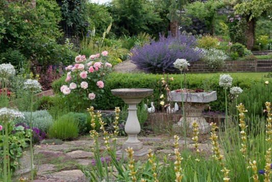 wpid19524-Village-Garden-in-June-GORH015-nicola-stocken.jpg