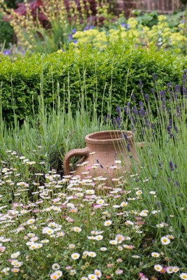wpid19562-Village-Garden-in-June-GORH056-nicola-stocken.jpg