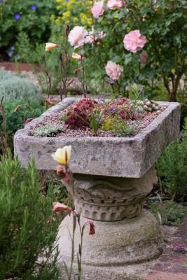 wpid19564-Village-Garden-in-June-GORH057-nicola-stocken.jpg