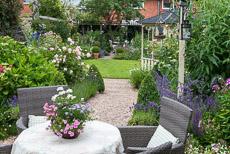 wpid20076-Elaines-Garden-in-July-2-thumb-GELA004-nicola-stocken.jpg