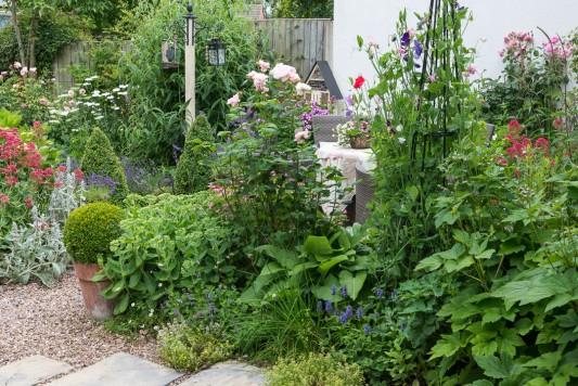 wpid20082-Elaines-Garden-in-July-GELA024-nicola-stocken.jpg