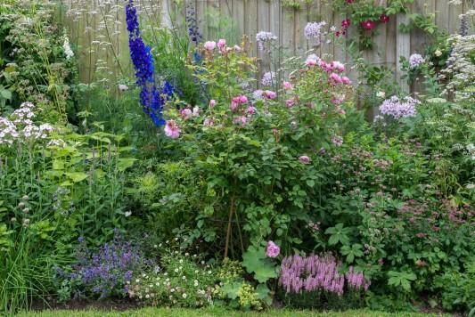 wpid20092-Elaines-Garden-in-July-GELA038-nicola-stocken.jpg
