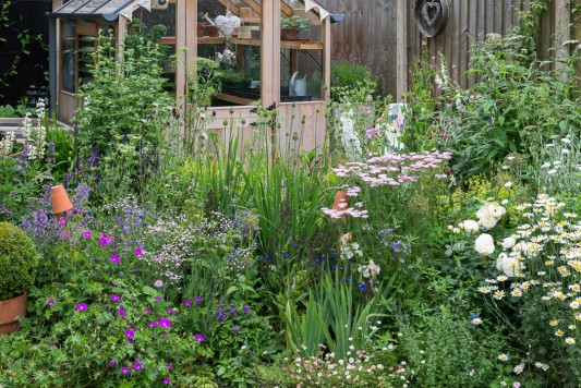 wpid20100-Elaines-Garden-in-July-GELA044-nicola-stocken.jpg