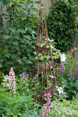 wpid20108-Elaines-Garden-in-July-GELA050-nicola-stocken.jpg