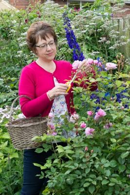 wpid20148-Elaines-Garden-in-July-GELA003-nicola-stocken.jpg