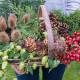 Christmas-Wreath-Step-by-Step-QCTW001-nicola-stocken.jpg thumbnail