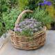 Planting-Herb-Basket-QCON702-nicola-stocken.jpg thumbnail