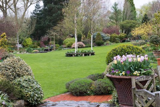 John-Masseys-garden-in-April-GASH231-nicola-stocken.jpg