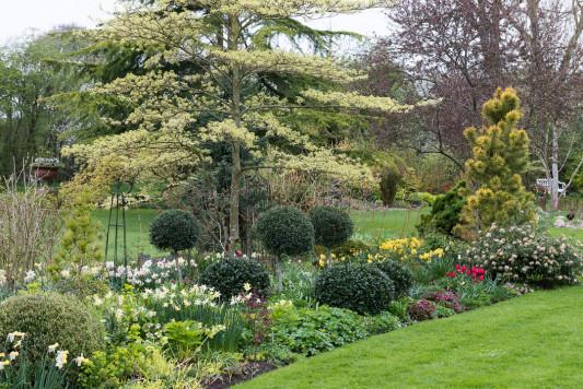 John-Masseys-garden-in-April-GASH233-nicola-stocken.jpg
