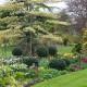 John-Masseys-garden-in-April-GASH233-nicola-stocken.jpg thumbnail