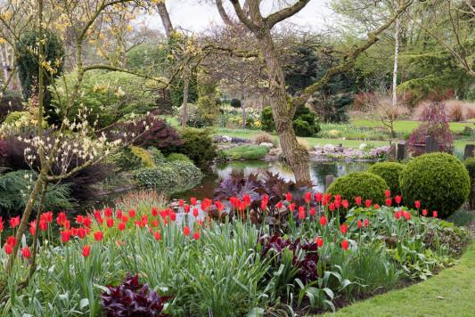 John-Masseys-garden-in-April-GASH236-nicola-stocken.jpg