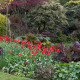 John-Masseys-garden-in-April-GASH237-nicola-stocken.jpg thumbnail