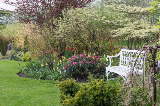 John-Masseys-garden-in-April-GASH240-nicola-stocken.jpg