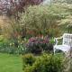 John-Masseys-garden-in-April-GASH240-nicola-stocken.jpg thumbnail