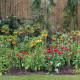John-Masseys-garden-in-April-GASH248-nicola-stocken.jpg thumbnail