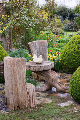 John-Masseys-garden-in-April-GASH257-nicola-stocken.jpg