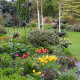 John-Masseys-garden-in-April-GASH262-nicola-stocken.jpg thumbnail