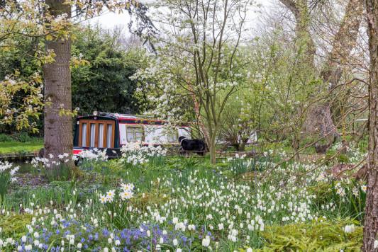 John-Masseys-garden-in-April-GASH265-nicola-stocken.jpg
