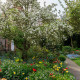 South-Shoebury-Hall-in-April-GSHO008-nicola-stocken.jpg thumbnail