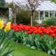 South-Shoebury-Hall-in-April-GSHO023-nicola-stocken.jpg thumbnail