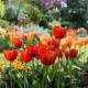South-Shoebury-Hall-in-April-GSHO030-nicola-stocken.jpg thumbnail