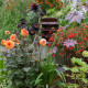 The-Avenue-in-August-GTHE022-nicola-stocken.jpg thumbnail