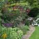 Woodside-avenue-in-July-GWDS014-nicola-stocken.jpg thumbnail