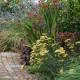 Woodside-avenue-in-July-GWDS024-nicola-stocken.jpg thumbnail