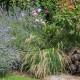 Woodside-avenue-in-July-GWDS028-nicola-stocken.jpg thumbnail