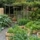 Fiddlers-Green-in-June-GFDG030-nicola-stocken.jpg thumbnail