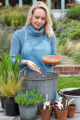 Planting-An-Autumn-Bucket-QCON372-nicola-stocken.jpg