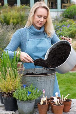 Planting-An-Autumn-Bucket-QCON373-nicola-stocken.jpg