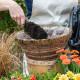 Planting-a-Summer-Hanging-Basket-QHAA151-nicola-stocken.jpg thumbnail
