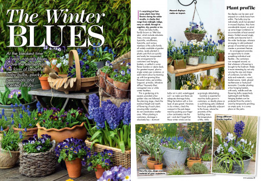 Woman's Weekly Gardening