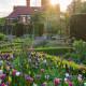 Victorian-Parterre-in-Spring-GWBH009-nicola-stocken.jpg thumbnail