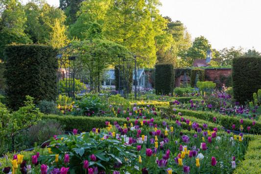 Victorian-Parterre-in-Spring-GWBH014-nicola-stocken.jpg