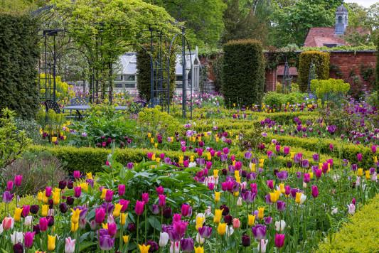 Victorian-Parterre-in-Spring-GWBH017-nicola-stocken.jpg