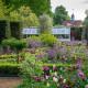 Victorian-Parterre-in-Spring-GWBH020-nicola-stocken.jpg thumbnail