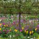 Victorian-Parterre-in-Spring-GWBH030-nicola-stocken.jpg thumbnail