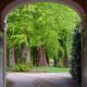 Victorian-Parterre-in-Spring-GWBH055-nicola-stocken.jpg thumbnail