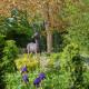 Victorian-Parterre-in-Spring-GWBH059-nicola-stocken.jpg thumbnail