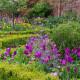 Victorian-Parterre-in-Spring-GWBH076-nicola-stocken.jpg thumbnail